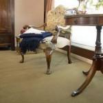 Van Dyck Carpets -20