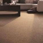 Carpet and Decor Centre - 08